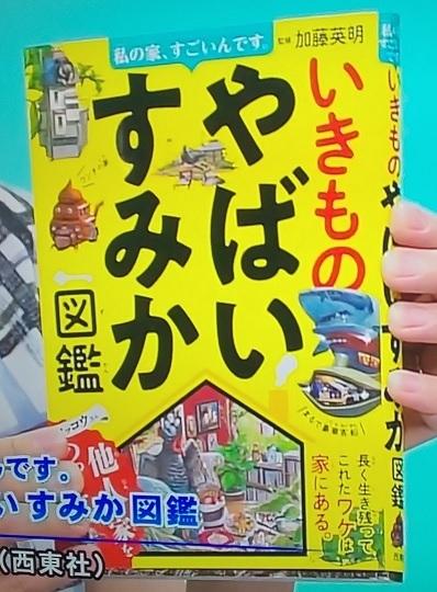 テレビ寺子屋,加藤英明,すみか,やばいすみか図鑑,テレビ静岡.jpg
