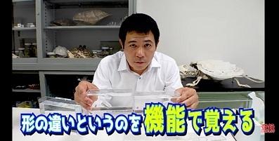 加藤英明.HideakiKato.ユーチューブ.メダカ.オスとメスの見分け方.15.jpg