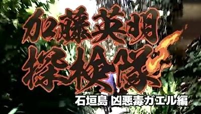 加藤英明.HideakiKato.Youtube.オオヒキガエル1.jpg