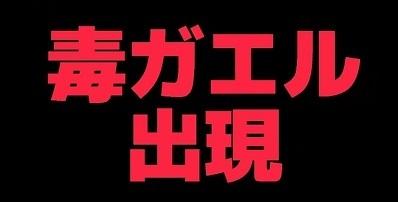 加藤英明.HideakiKato.Youtube.オオヒキガエル3.jpg